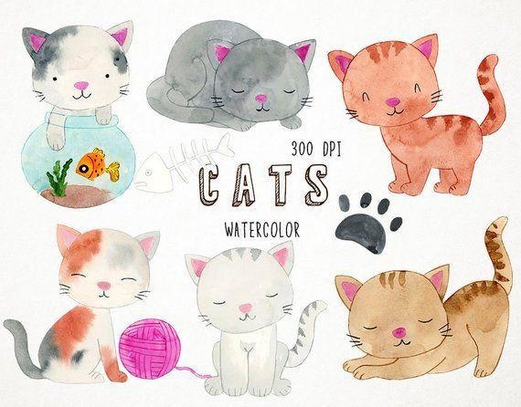 Cat Clipart Watercolor Clipart Watercolor Cat Clipart Cat