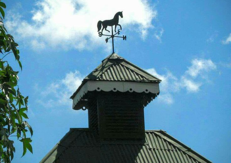 Wild horses roam the village. So the weathervane has a horse instead of a cockerell.