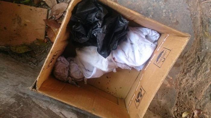 Keanehan Terjadi Saat Mayat Bayi Masuk Mesin Penggiling Sampah