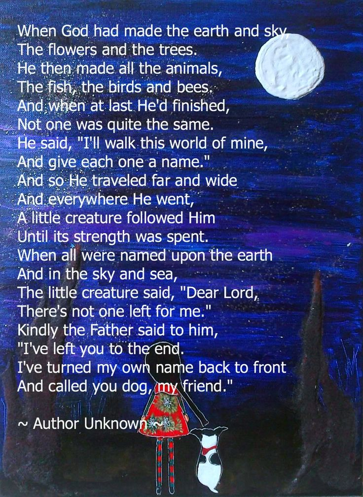 why god made dogs poem - Google Search