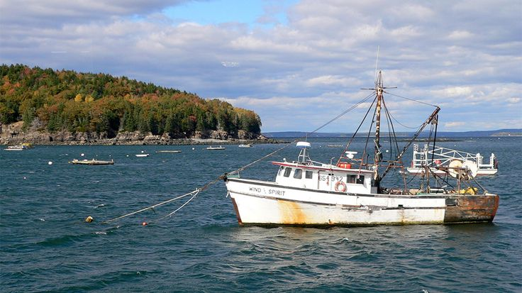 With a shipbuilding and seafaring history that dates back to the 17th century, Kennebunkport is a logical jumping-off point for hitting the open sea. Bait your hook and line and book a fishing charter with Striker Charters, which offers inshore and offshore charters (trips target mackerel, herring, bluefin tuna and mako). Kids (and grownups!) will love a trip with Rugosa Lobster Tours aboard a classic, wooden, New England lobster boat. Watch your crew haul lobster traps, and even get up…