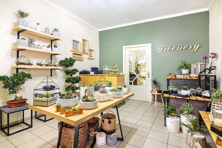 Greenery art of plants #greenery #greeneryartofplants #interior #decoration #chania #crete