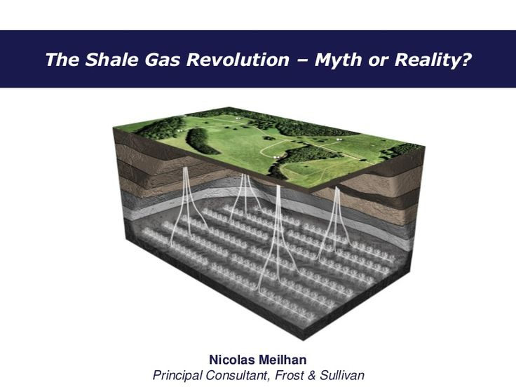 The Shale Gas Revolution - Myth or Reality?