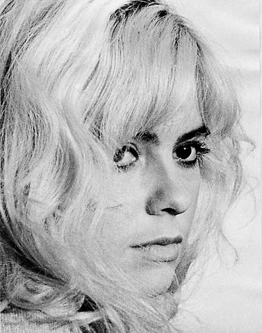 Kirsti Wallasvaara, Käpy selän alla 1966