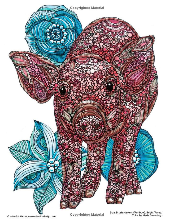 Creative Animal Coloring Book Best Images About Pages On Mondays