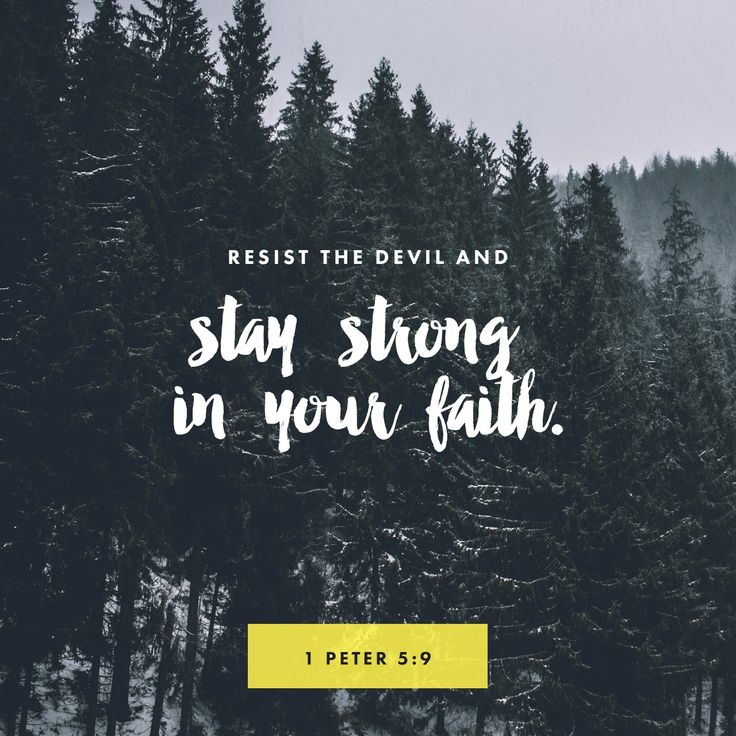 """""""Be sober and alert. Your enemy the devil, like a roaring lion, is on the prowl looking for someone to devour. Resist him, strong in your faith, because you know that your brothers and sisters throughout the world are enduring the same kinds of suffering."""" 1 Peter 5:8-9 NET http://bible.com/107/1pe.5.8-9.net"""