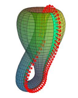 Klein Bottle - a 4 dimensional moebius strip :)