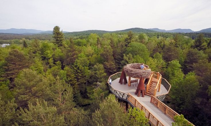 The Wild Walk at Adirondack Park invites visitors to stroll nearly 40 feet above the forest floor.