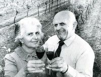Matija (1924-2014) and Mate Selak (1922 - 1991).  In 1960 the Selaks vineyard at Lincoln Road, Henderson, situated just north of the 1YA radio mast, was taken under the Public Works Act for motorway extension. Mate started over again, purchasing 20 acres of land in Kumeu. Photo on geni.