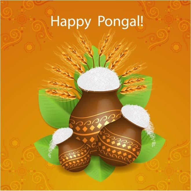 free vector Celebration of South Indian festival Happy Pongal Day http://www.cgvector.com/free-vector-celebration-south-indian-festival-happy-pongal-day-4/ #Agriculture, #Asian, #Background, #Banana, #Banner, #Card, #Celebration, #Celebrations, #Clebration, #Coconut, #Colorful, #Concept, #Cow, #Creative, #Creativity, #Culture, #Decoration, #Design, #Editable, #Ethnic, #Farm, #Farmer, #Festival, #Floral, #Flower, #Food, #Fruit, #Grain, #Greeting, #Happy, #Harvest, #Harvestin