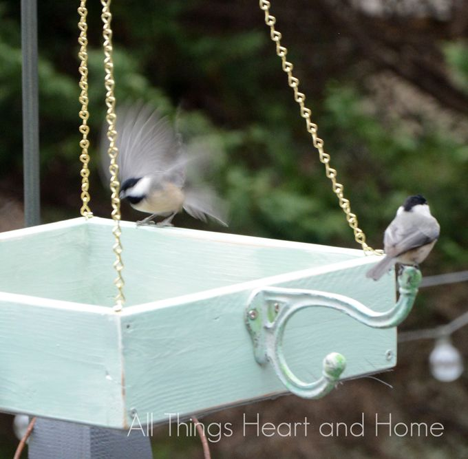 Hometalk :: Easy Platform Bird Feeder