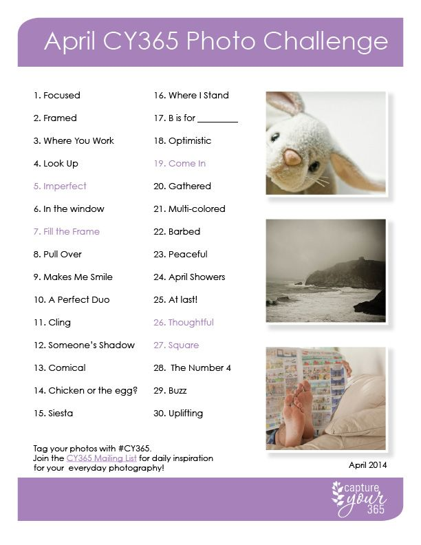 April CY365 Photo Challenge List 2014
