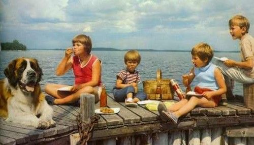 Zweedse jeugdserie naar de boeken van Astrid Lindgren: Vakantie op het eiland Zeekraai (Saltkrokan) met Pelle, Torven, Stina, Malin en Bootsman (de hond).