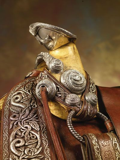Gorgeous side view of saddle horn - really, it's a saddle horn...