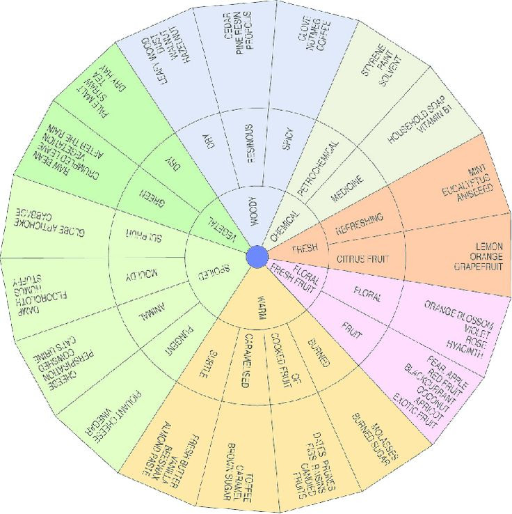 Figure-2-Odour-and-aroma-wheel-IHC-2001a.png (741×744)