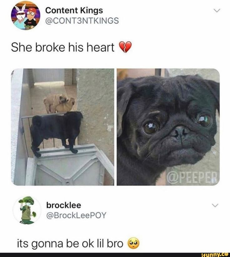 She broke his heart Y its gonna be ok lil bro €s) iFunny