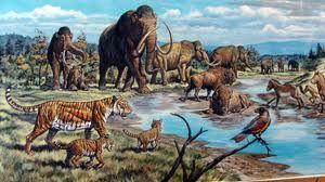 Link Artikel : http://kanzunqalam.com/2013/05/06/menyelusuri-masa-kehidupan-nabi-adam-berdasarkan-genetika-astronomi-dan-geologi/ Menyelusuri masa kehidupan NABI ADAM, berdasarkan Genetika, Arkeologi, Astronomi dan Geologi
