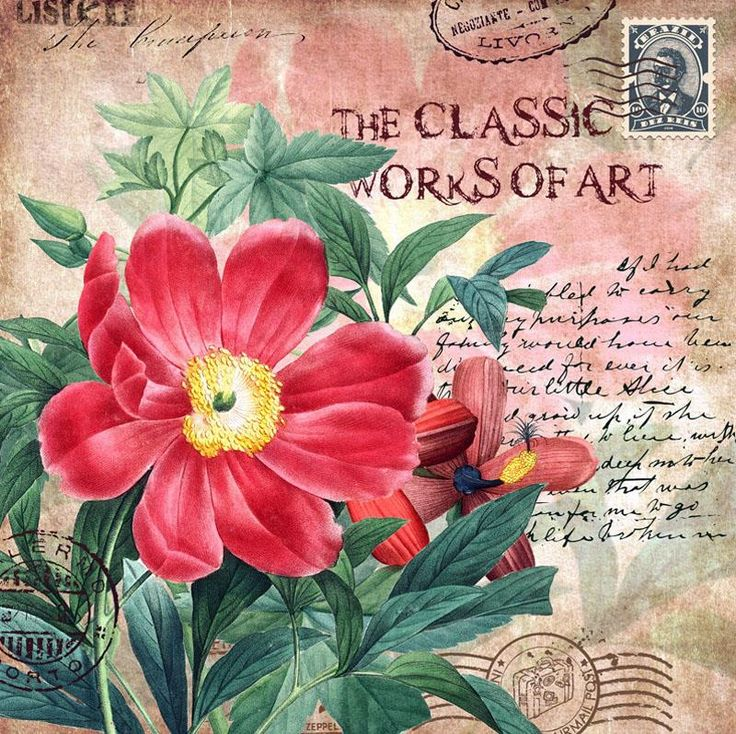 The Classic World of Art. Pink wild rose, stamp, postmark, writing
