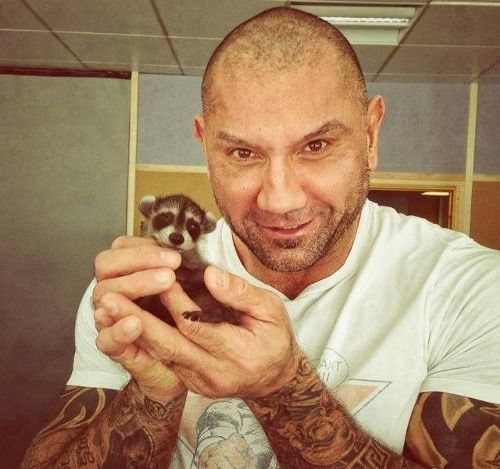 Nothing cuter than Drax the Destroyer holding a cute little Rocket Raccoon. Guardians.