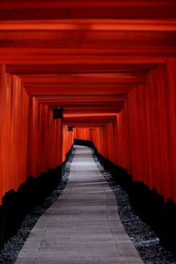 Inari gate at Fushimi Inari Taisha, Kyoto, Japan