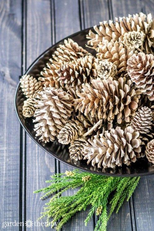 Bleached Pinecones Tutorial