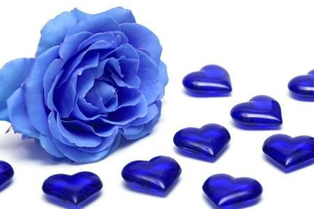 Foto Mazzo di Rose Blu Come Colorare le Rose di Blu