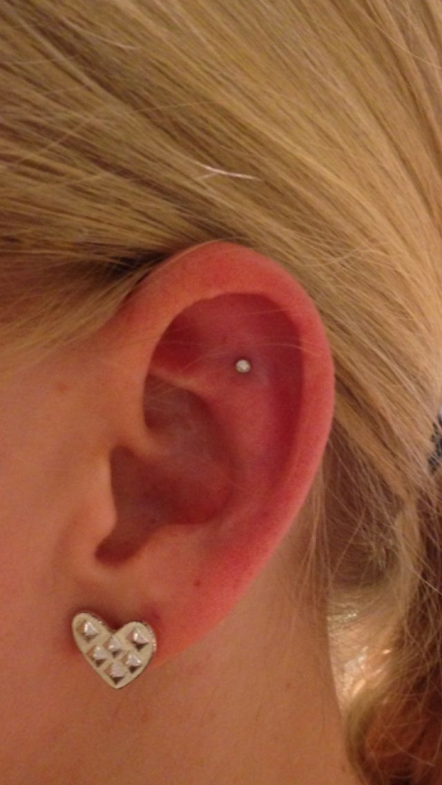 best 25 outer conch piercing ideas on pinterest inner conch piercing ear piercings orbital. Black Bedroom Furniture Sets. Home Design Ideas