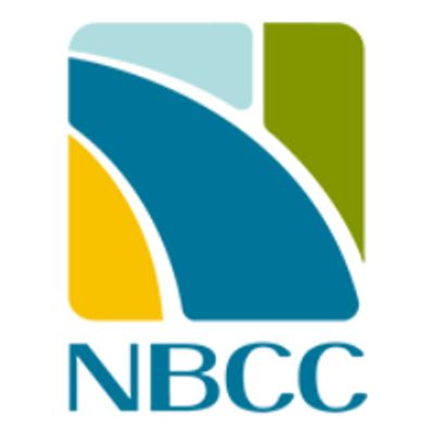 equity shares NBCC