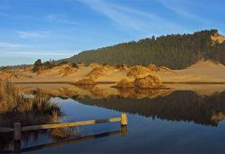 Sand-Dune Camping, Florence, Oregon