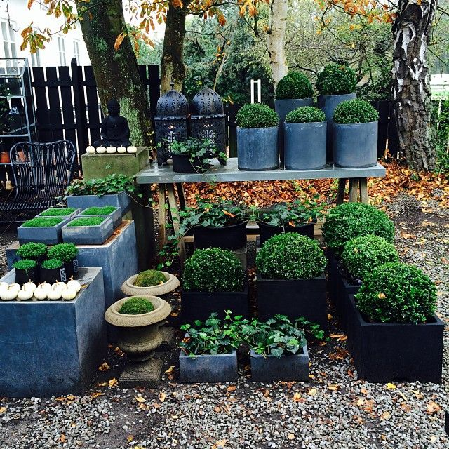 Garden center ideas pin by baedke on garden center ideas for Garden center designs