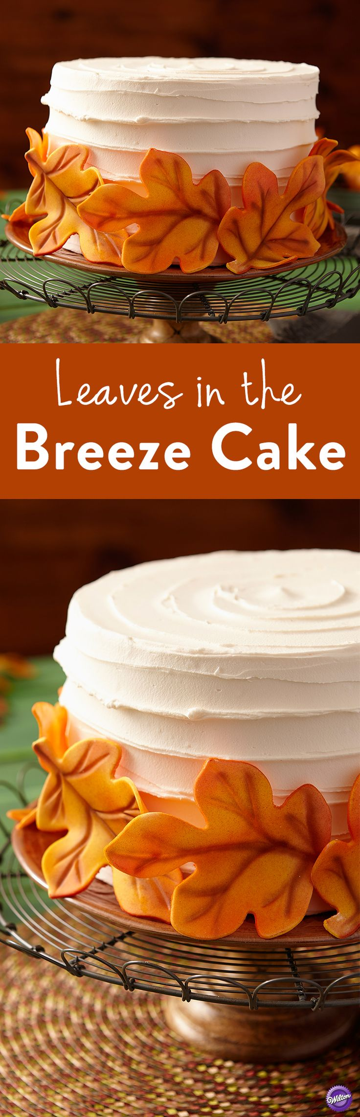 Leaves In The Breeze Cake Fall Colors Are Air And Captured A