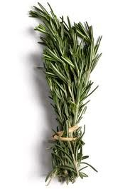 rosemary - Google Search
