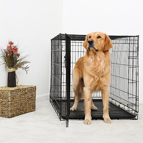 DuraCrate Folding Dog Crate 18Lx12Wx14H * Be sure to check out this helpful article.