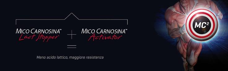 Mico Carnosina: ridurre l'acido lattico per aumentare la resistenza