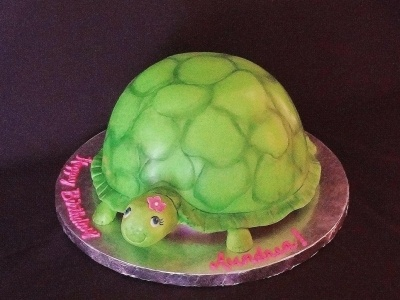 Girly Turtle By Alisa555 on CakeCentral.com