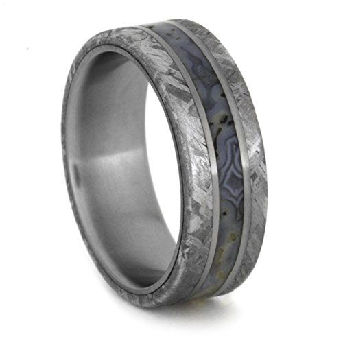 Dinosaur Bone Ring With Meteorite Inlay, Titanium Wedding Band With Titanium  Pinstripes