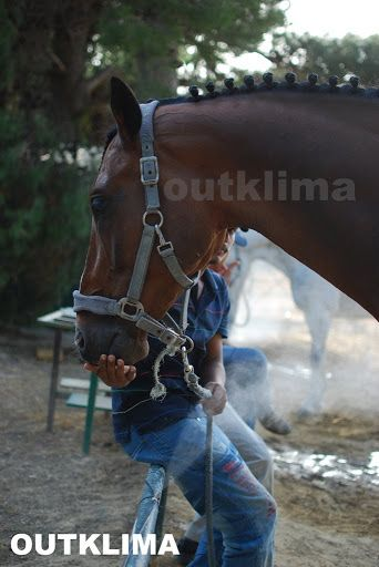 ΥΔΡΟΝΕΦΩΣΗ horce cooling by outklima.gr