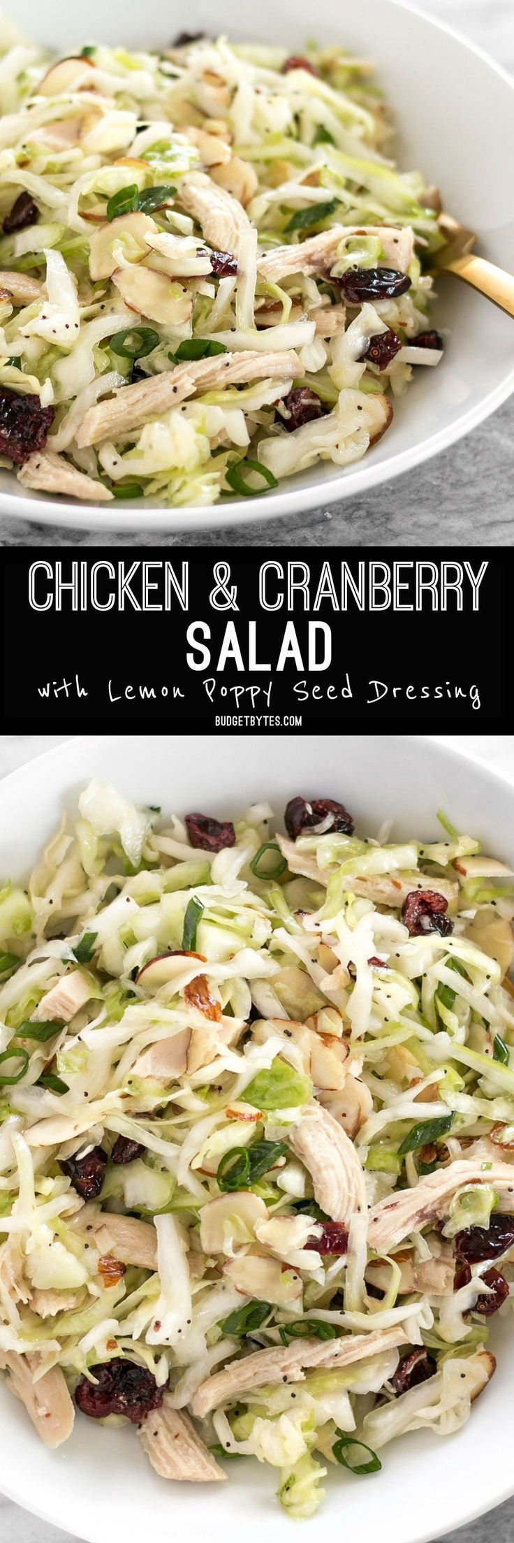 This Chicken and Cranberry Salad combines tender cabbage, nutty almonds, sweet cranberries and a tart lemon poppy seed dressing, plus enough chicken to make it a meal.