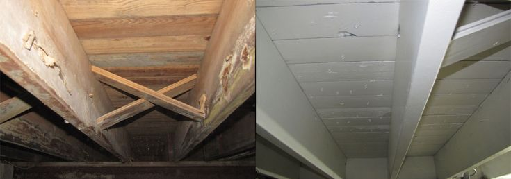 Almost every home gets #mold, and that means there's a need for #moldremediation. We'll show you how to remove mold before it gets out of hand. http://www.biowashing.com/mold-removal-in-newark-de/ #remediation #mold #moldremoval #blackmold #HomeImprovement #moldremoval #MoldRemediation #MoldRemovalServices #HomeMoldInspection #MoldCleanup #waterdamage #remediation