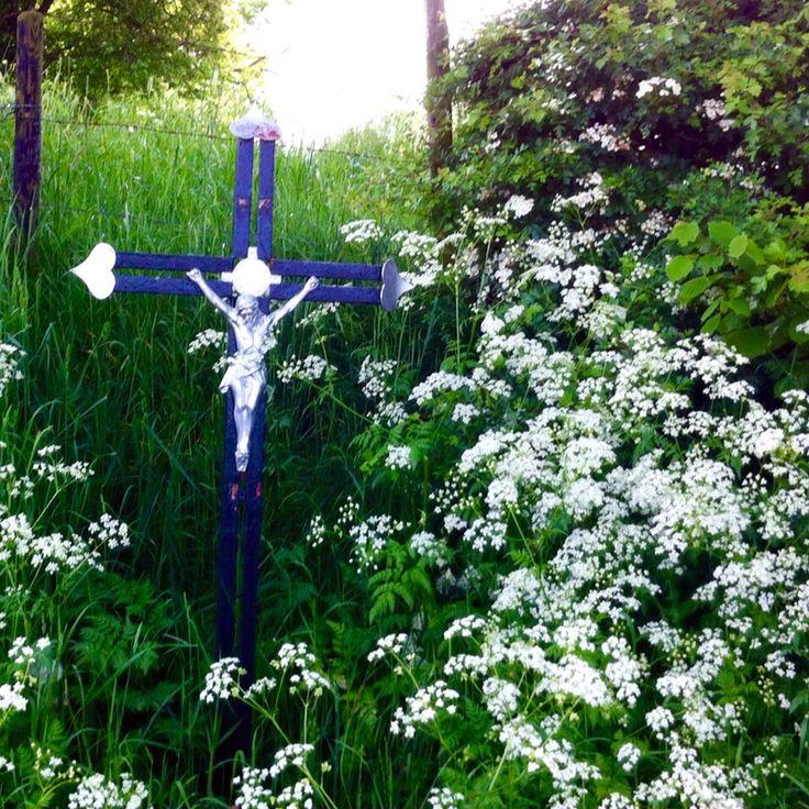 Veldkruis Zuid-Limburg