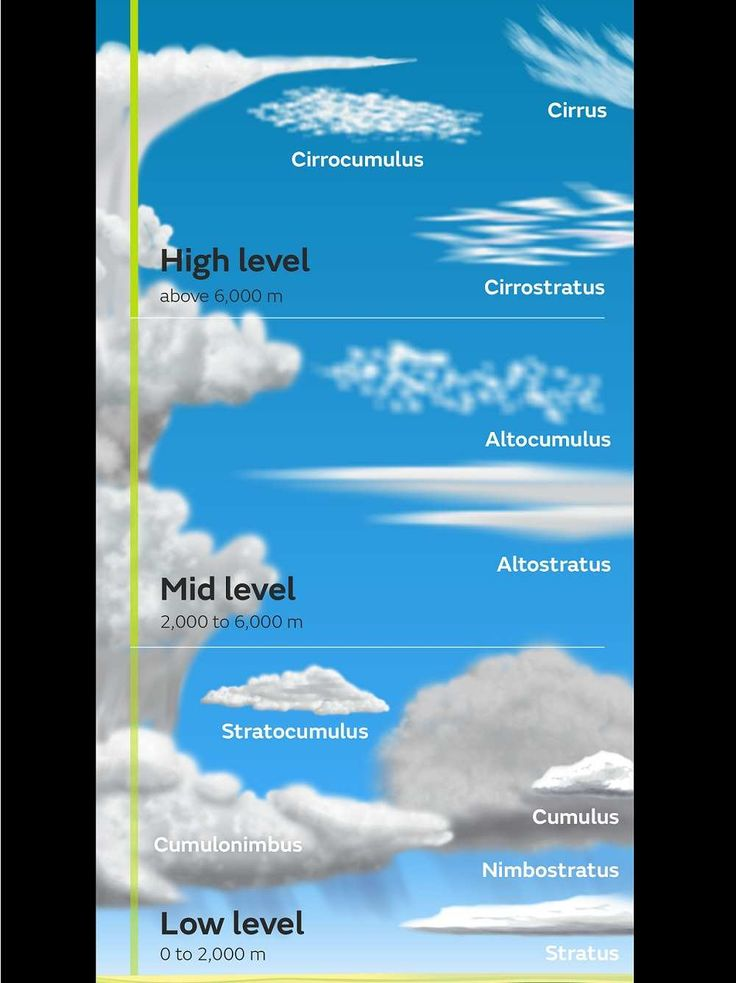 Les grands genres de nuages: stratus/strato: étendu, couche, continu - Cumulus/cumulo-: moutonneux - Cirrus/cirro-: filament - Nimbus/nimbo-: porteur de pluie - Alto-: moyen. - OMM