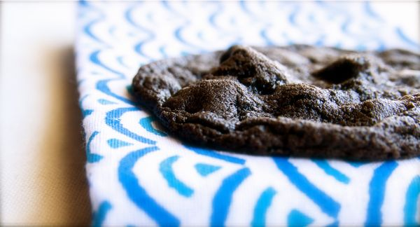 Salted Double Chocolate Peanut Butter Cookies   Yum!   Pinterest ...