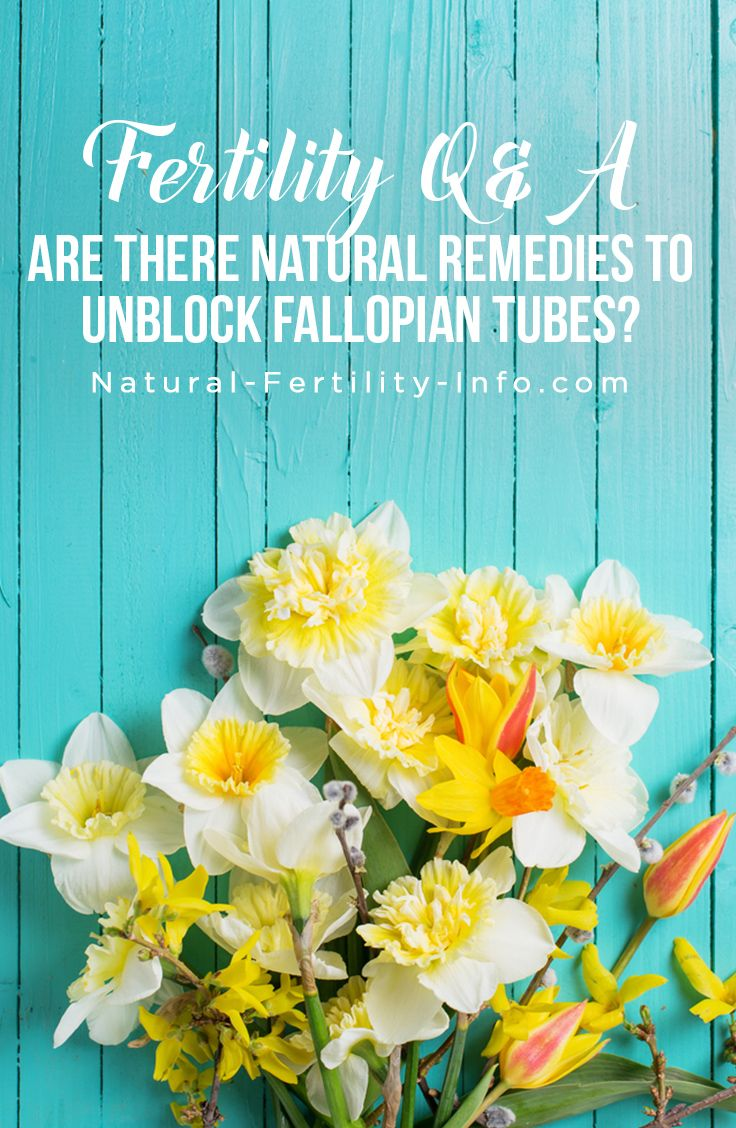 Fertility Q&A – Are There Natural Remedies to Unblock Fallopian Tubes? Elizabeth Willett, MA, CH  Each day some of our most common questions come from women with blocked fallopian tubes. Their main concern? Unblocking their fallopian tubes naturally. This Fertility Q&A will focus on some of these questions…  #fertility #infertility #ttc #ttcsisters #IVF #PCOS #fertilityherbs #naturalfertility #NaturalFertilityShop