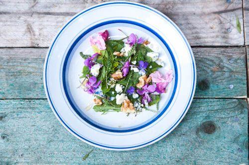Foraging-Wild Summer Salad