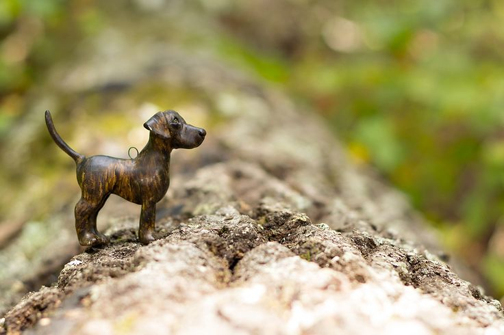 Plott Hound ornament!  http://claywhisperer.blogspot.com/2015/09/the-plott-hounds-have-landed.html