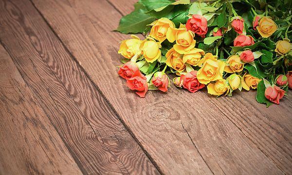 Tenderness Photograph by Nadezhda Tikhaia   #NadezhdaTikhaiaFineArtPhotography #ArtForHome #HomeDecor #Flowers #InteriorDesign #FineArtPrints