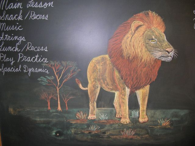 waldorf 4th grade human animal lion chalkboard drawing. Black Bedroom Furniture Sets. Home Design Ideas