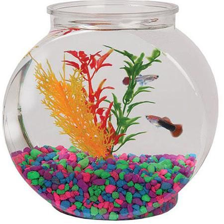 17 best ideas about fish bowl decorations on pinterest for Fish bowl ideas