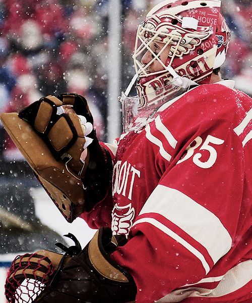 Jimmy Howard of the Detroit Red Wings at the 2014 Winter Classic