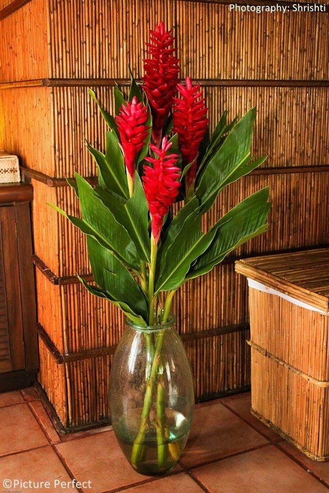 Best images about flower arrangement on pinterest